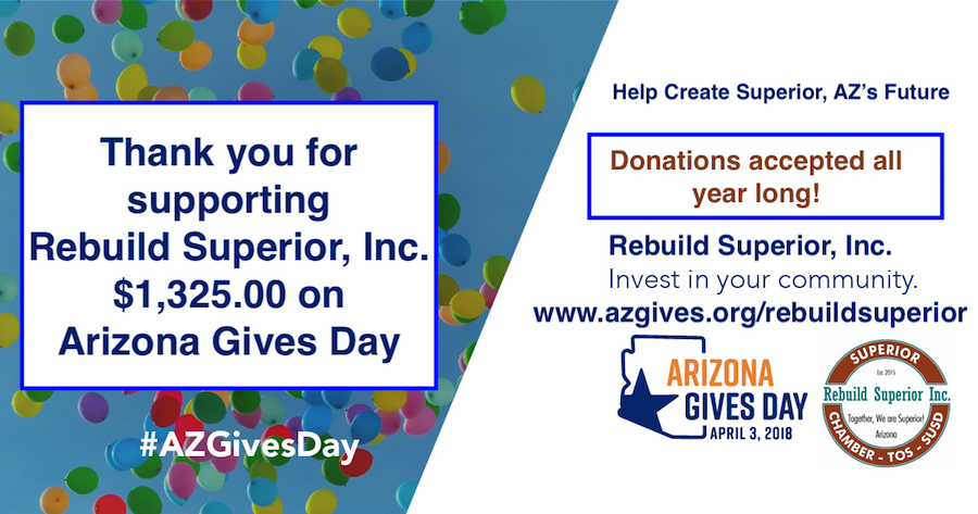 Arizona Gives Day Results